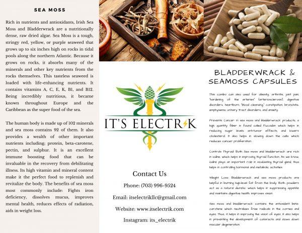 Bladderwrack & Wildcrafted Irish Sea Moss Capsules | 100 | 150 | 250 Vegan Capsules